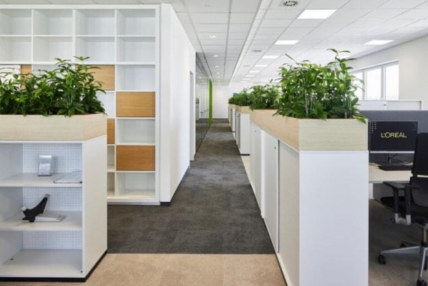 Офис Green, фото №3