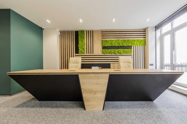 Офіс в еко стилі, фото №2